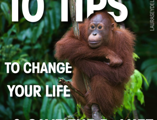 10 Earth Day Tips on How To Change Your Life & Save The Planet